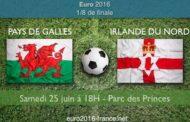 Meilleures cotes et pronostic de Pays de Galles-Irlande du Nord, huitièmes de finale de l'Euro 2016