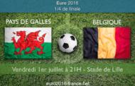 Meilleures cotes et pronostic pour Pays de Galles-Belgique, quart de finale de l'Euro 2016 - le 01 juillet à 21h à Lille
