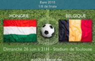 Meilleures cotes et pronostic pour Hongrie-Belgique, huitième de finale de l'Euro 2016 - le 26 juin à Toulouse
